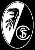 Scfreiburg-Bm-Pos-Rgb